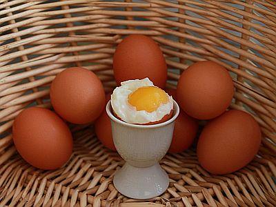 Von welchem Bauern kommt das Ei?