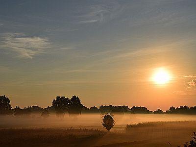 Der Morgen beginnt. Immer gleich?