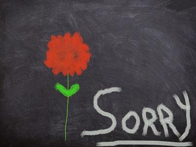 Sorry-Schriftzug und Blume