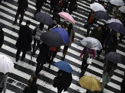 Menschen gehen im Regen über den Zebrastreifen