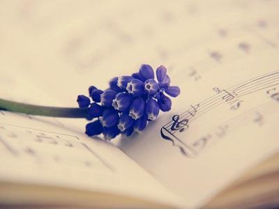 Blüte auf einem Notenblatt