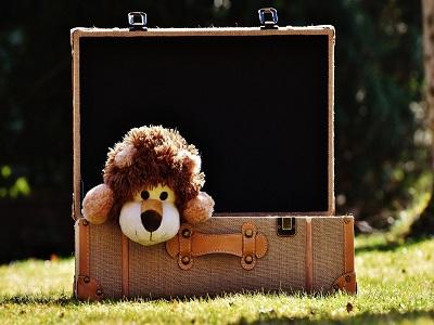 Ein Kuschellöwe in einem Koffer
