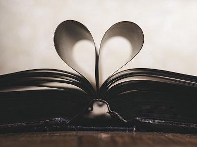 Buch auf Wiese